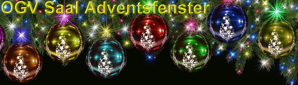 OGV Saal - Adventsfenster